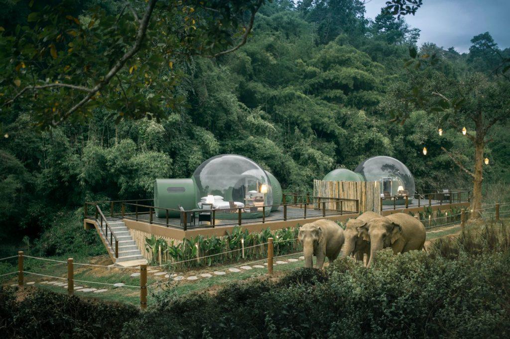 Anantara Golden Triangle Thailand Jungle Bubble