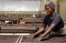 Nespresso Reviving Origins